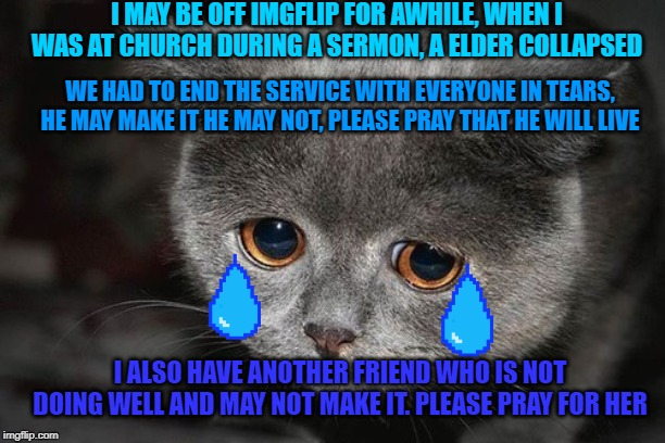 I MAY BE OFF IMGFLIP FOR AWHILE, WHEN I WAS AT CHURCH DURING A SERMON, A ELDER COLLAPSED WE HAD TO END THE SERVICE WITH EVERYONE IN TEARS, H | image tagged in sad,sad cat,cute cat | made w/ Imgflip meme maker