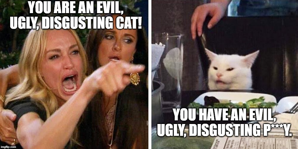 Smudge the cat | YOU ARE AN EVIL, UGLY, DISGUSTING CAT! YOU HAVE AN EVIL, UGLY, DISGUSTING P***Y. | image tagged in smudge the cat | made w/ Imgflip meme maker