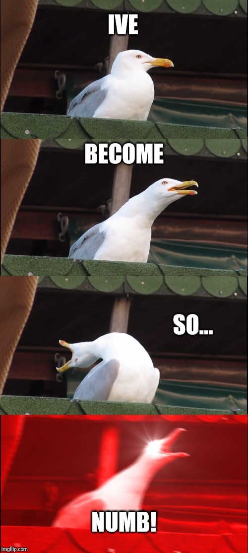 Inhaling Seagull | IVE BECOME SO... NUMB! | image tagged in memes,inhaling seagull | made w/ Imgflip meme maker