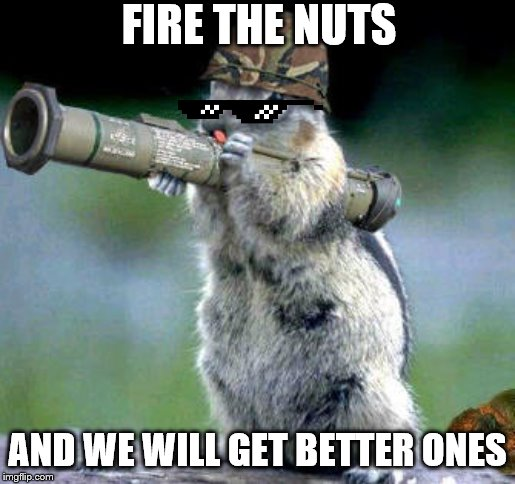Bazooka Squirrel Meme | FIRE THE NUTS AND WE WILL GET BETTER ONES | image tagged in memes,bazooka squirrel | made w/ Imgflip meme maker
