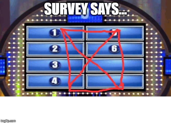 The Survey Says.. | SURVEY SAYS... | image tagged in the survey says | made w/ Imgflip meme maker