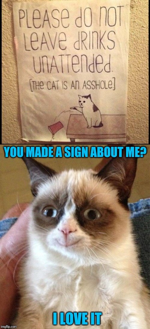 Ha Ha Ha ;) |  YOU MADE A SIGN ABOUT ME? I LOVE IT | image tagged in memes,grumpy cat happy,44colt,cats,drinks | made w/ Imgflip meme maker