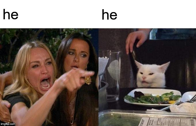he he | image tagged in memes,woman yelling at cat | made w/ Imgflip meme maker