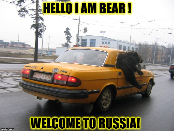 HELLO I AM BEAR ! WELCOME TO RUSSIA! | image tagged in bear,russia,taxi,bullshit | made w/ Imgflip meme maker