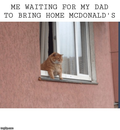 ME WAITING FOR MY DAD TO BRING HOME MCDONALD'S | image tagged in mcdonald's | made w/ Imgflip meme maker