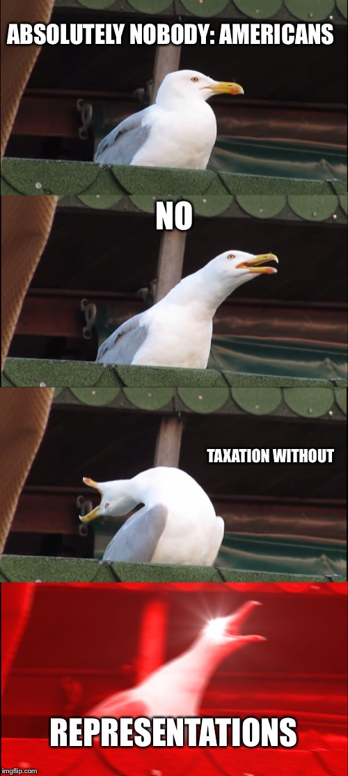 Inhaling Seagull Meme | ABSOLUTELY NOBODY: AMERICANS NO TAXATION WITHOUT REPRESENTATIONS | image tagged in memes,inhaling seagull | made w/ Imgflip meme maker