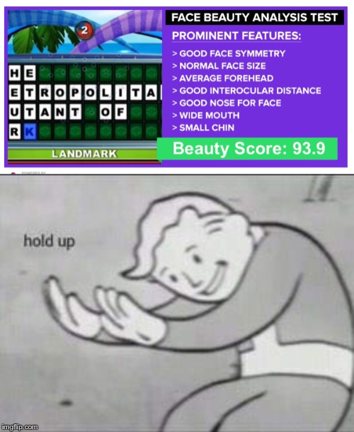 That doesn't look like a face to me. | image tagged in fallout hold up | made w/ Imgflip meme maker