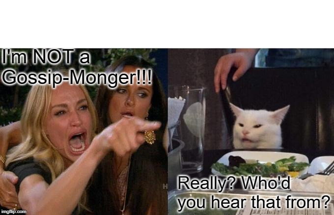 Woman Yelling At Cat Meme | I'm NOT a Gossip-Monger!!! Really? Who'd you hear that from? | image tagged in memes,woman yelling at cat | made w/ Imgflip meme maker