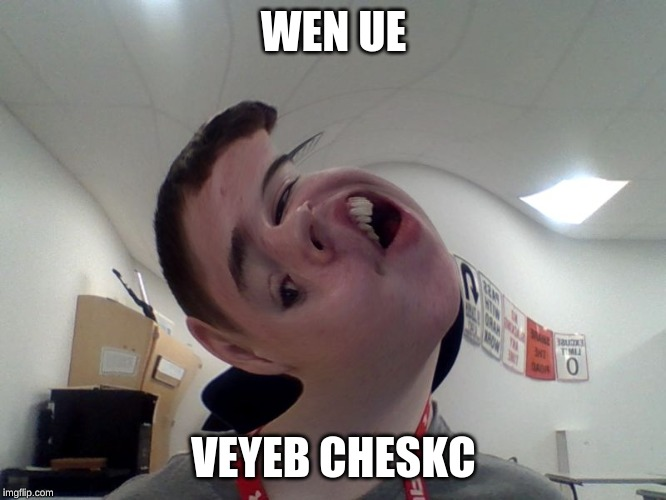 WEN UE; VEYEB CHESKC | image tagged in vibe check,derp,derpy,memes,meme,photo booth | made w/ Imgflip meme maker