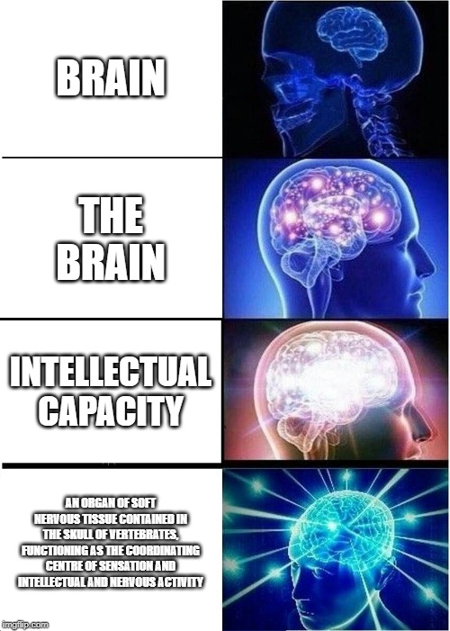 Expanding Brain Meme | BRAIN THE BRAIN INTELLECTUAL CAPACITY AN ORGAN OF SOFT NERVOUS TISSUE CONTAINED IN THE SKULL OF VERTEBRATES, FUNCTIONING AS THE COORDINATING | image tagged in memes,expanding brain | made w/ Imgflip meme maker