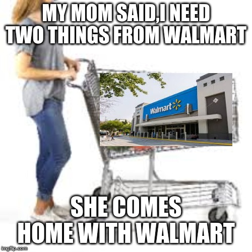 MY MOM SAID,I NEED TWO THINGS FROM WALMART SHE COMES HOME WITH WALMART | image tagged in memes | made w/ Imgflip meme maker
