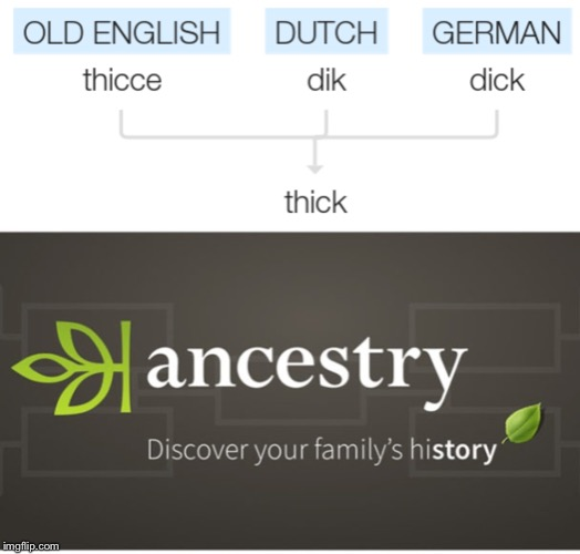 Sign Up For Ancestry Now | image tagged in thicc,thick,german,english,history,memes | made w/ Imgflip meme maker