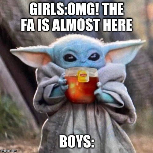 so true | GIRLS:OMG! THE FA IS ALMOST HERE BOYS: | image tagged in so true | made w/ Imgflip meme maker