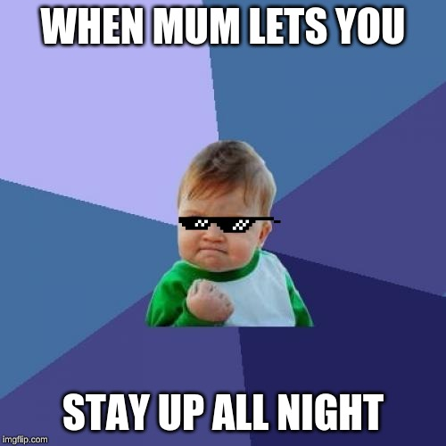 Success Kid | WHEN MUM LETS YOU STAY UP ALL NIGHT | image tagged in memes,success kid | made w/ Imgflip meme maker