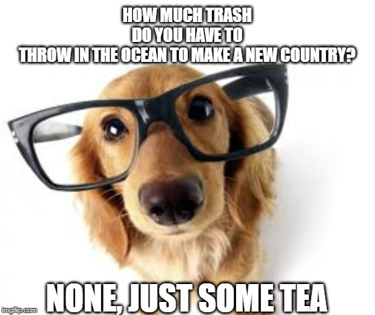 ocean trash? | HOW MUCH TRASH DO YOU HAVE TO THROW IN THE OCEAN TO MAKE A NEW COUNTRY? NONE, JUST SOME TEA | image tagged in can i help you,throw trash,new country | made w/ Imgflip meme maker