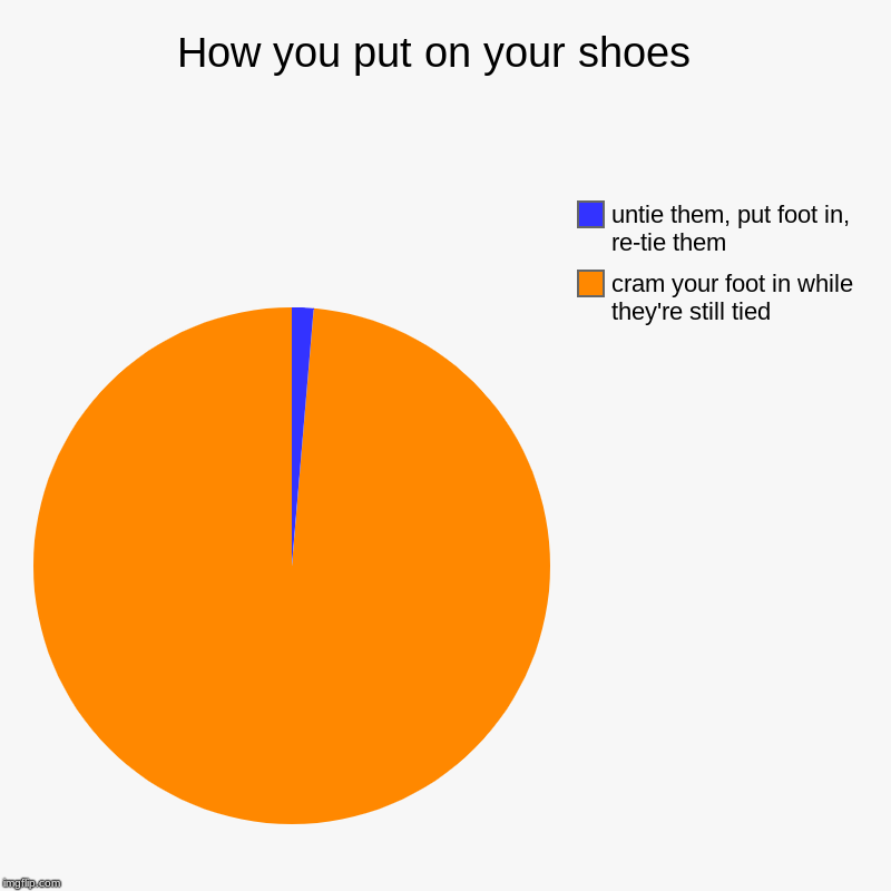 How you put on your shoes  | cram your foot in while they're still tied , untie them, put foot in, re-tie them | image tagged in charts,pie charts | made w/ Imgflip chart maker