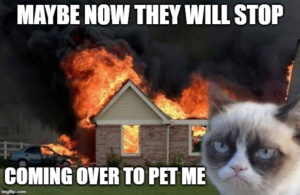 Burn Kitty Meme | MAYBE NOW THEY WILL STOP COMING OVER TO PET ME | image tagged in memes,burn kitty,grumpy cat | made w/ Imgflip meme maker