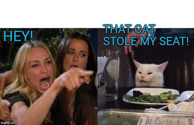 Woman Yelling At Cat Meme | HEY! THAT CAT STOLE MY SEAT! | image tagged in memes,woman yelling at cat | made w/ Imgflip meme maker