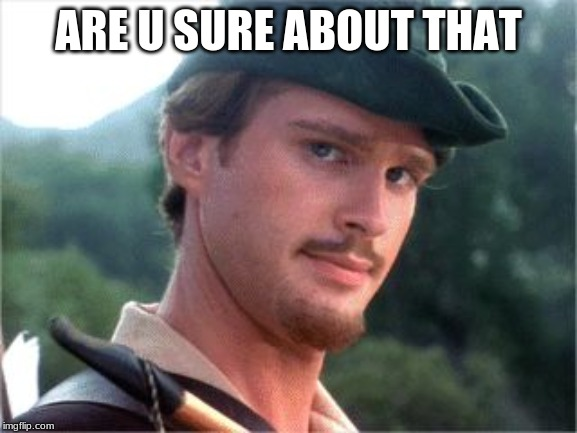 Robin Hood men in tights | ARE U SURE ABOUT THAT | image tagged in robin hood men in tights | made w/ Imgflip meme maker