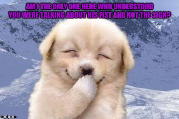 Laughing dog | AM I THE ONLY ONE HERE WHO UNDERSTOOD YOU WERE TALKING ABOUT HIS FIST AND NOT THE SIGN? | image tagged in laughing dog | made w/ Imgflip meme maker