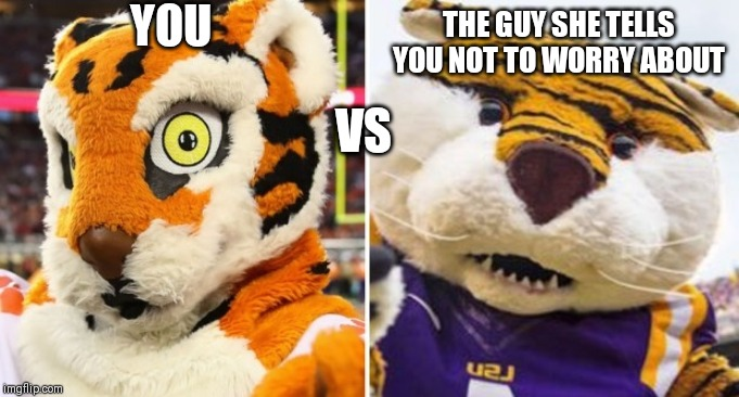 YOU VS THE GUY SHE TELLS YOU NOT TO WORRY ABOUT | image tagged in cfbmemes | made w/ Imgflip meme maker
