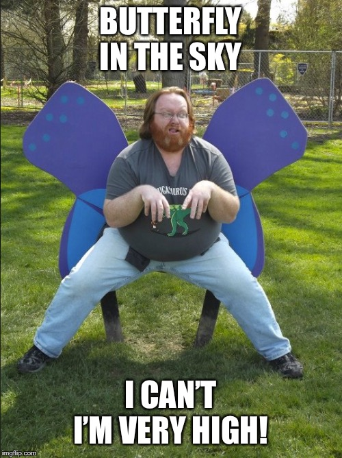 A Wild Butterfly appears | BUTTERFLY IN THE SKY I CAN'T I'M VERY HIGH! | image tagged in a wild butterfly appears | made w/ Imgflip meme maker