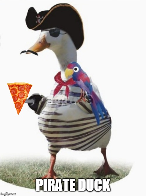 PIRATE DUCK | made w/ Imgflip meme maker