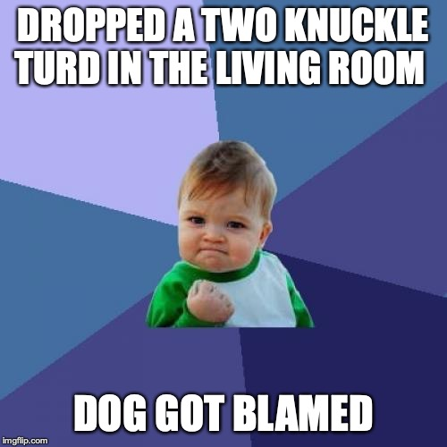 2knuckle | DROPPED A TWO KNUCKLE TURD IN THE LIVING ROOM DOG GOT BLAMED | image tagged in memes,success kid,funny,animals,futurama fry,spongebob | made w/ Imgflip meme maker
