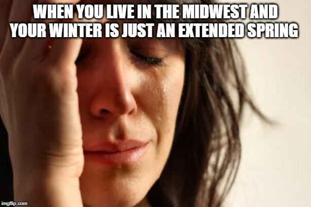 First World Problems Meme | WHEN YOU LIVE IN THE MIDWEST AND YOUR WINTER IS JUST AN EXTENDED SPRING | image tagged in memes,first world problems | made w/ Imgflip meme maker