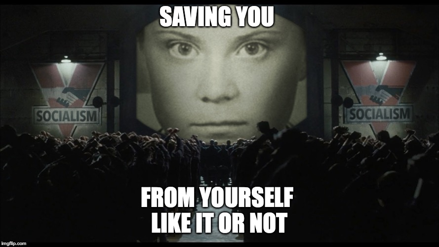 Greta Thunberg | SAVING YOU FROM YOURSELF  LIKE IT OR NOT | image tagged in greta thunberg | made w/ Imgflip meme maker