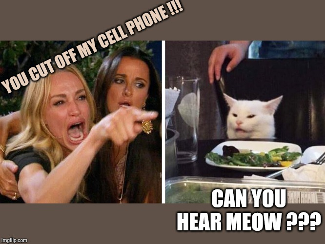 Smudge the cat | YOU CUT OFF MY CELL PHONE !!! CAN YOU HEAR MEOW ??? | image tagged in smudge the cat | made w/ Imgflip meme maker