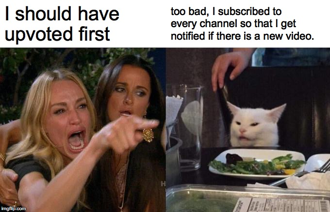 Woman Yelling At Cat Meme | I should have upvoted first too bad, I subscribed to every channel so that I get notified if there is a new video. | image tagged in memes,woman yelling at cat | made w/ Imgflip meme maker