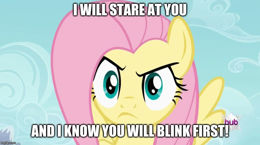 You blinked! | I WILL STARE AT YOU AND I KNOW YOU WILL BLINK FIRST! | image tagged in memes,fluttershy,stare,blink | made w/ Imgflip meme maker