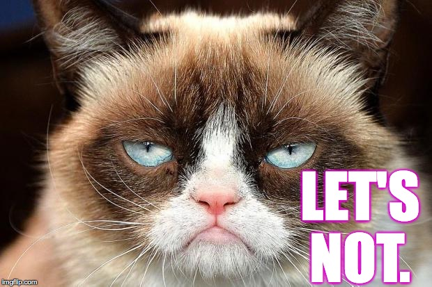 Grumpy Cat Not Amused Meme | LET'S NOT. | image tagged in memes,grumpy cat not amused,grumpy cat | made w/ Imgflip meme maker