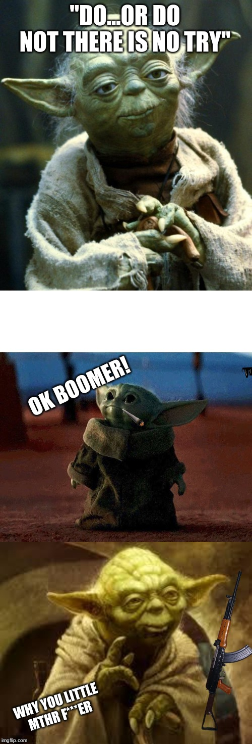 """DO...OR DO NOT THERE IS NO TRY"" OK BOOMER! WHY YOU LITTLE MTHR F***ER 