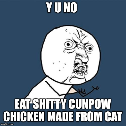 Y U No Meme | Y U NO EAT SHITTY CUNPOW CHICKEN MADE FROM CAT | image tagged in memes,y u no | made w/ Imgflip meme maker