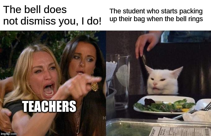 Everyone has this teacher at some point | The bell does not dismiss you, I do! The student who starts packing up their bag when the bell rings TEACHERS | image tagged in memes,woman yelling at cat,school | made w/ Imgflip meme maker