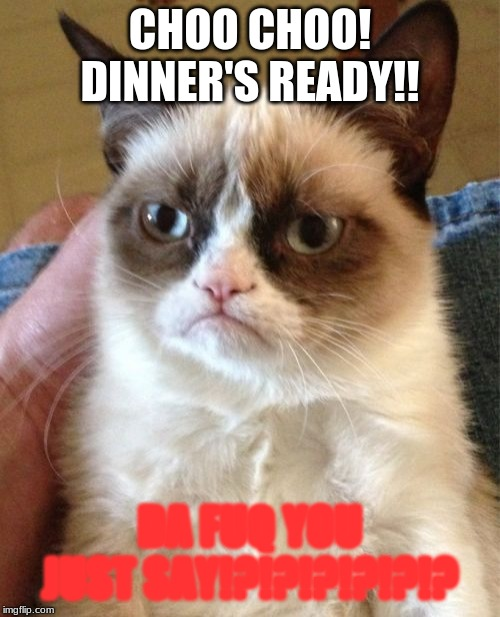 DInner | CHOO CHOO! DINNER'S READY!! DA FUQ YOU JUST SAY!?!?!?!?!?!? | image tagged in memes,grumpy cat | made w/ Imgflip meme maker