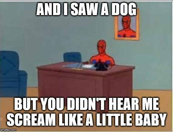 Spiderman Computer Desk Meme | AND I SAW A DOG BUT YOU DIDN'T HEAR ME SCREAM LIKE A LITTLE BABY | image tagged in memes,spiderman computer desk,spiderman | made w/ Imgflip meme maker