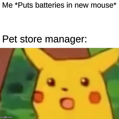 Surprised Pikachu Meme | Me *Puts batteries in new mouse* Pet store manager: | image tagged in memes,surprised pikachu | made w/ Imgflip meme maker