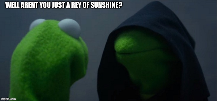 Evil Kermit Meme | WELL ARENT YOU JUST A REY OF SUNSHINE? | image tagged in memes,evil kermit | made w/ Imgflip meme maker