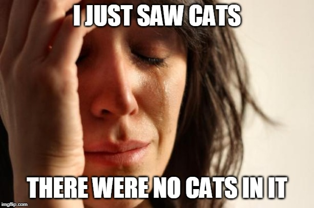 Cats meow-sside, how bow dah | I JUST SAW CATS THERE WERE NO CATS IN IT | image tagged in memes,first world problems,jennifer hudson,taylor swift,judi dench,movies | made w/ Imgflip meme maker