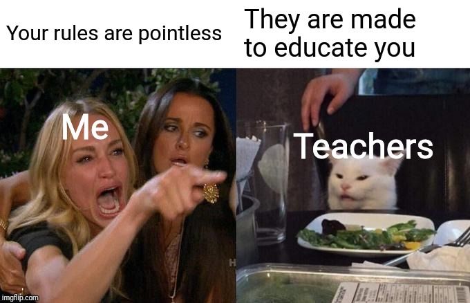 Woman Yelling At Cat Meme | Your rules are pointless They are made to educate you Teachers Me | image tagged in memes,woman yelling at cat | made w/ Imgflip meme maker