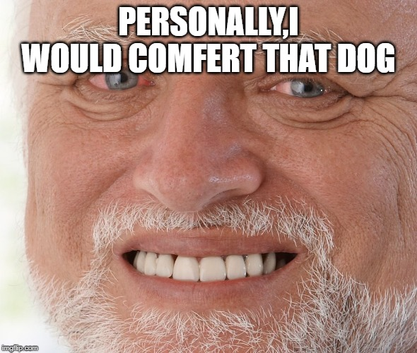 Hide the Pain Harold | PERSONALLY,I WOULD COMFERT THAT DOG | image tagged in hide the pain harold | made w/ Imgflip meme maker