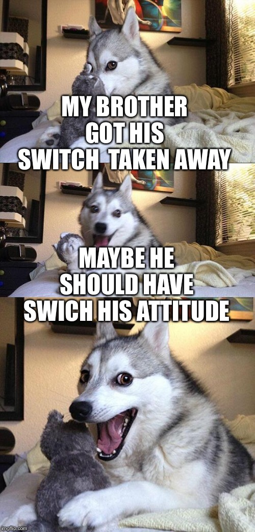 MY BROTHER GOT HIS SWITCH  TAKEN AWAY MAYBE HE SHOULD HAVE SWICH HIS ATTITUDE | image tagged in bad dog puns | made w/ Imgflip meme maker