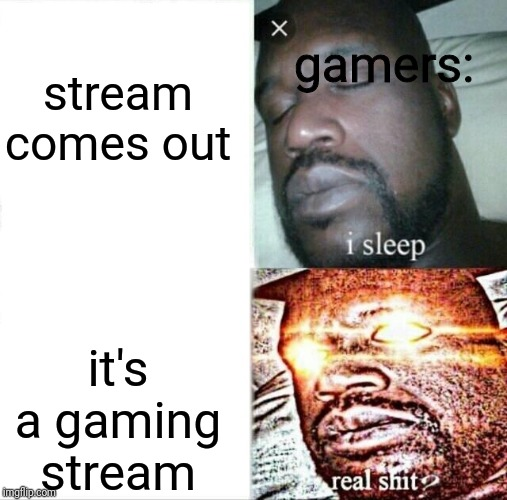 revived a dead format :D | stream comes out it's a gaming stream gamers: | image tagged in memes,sleeping shaq | made w/ Imgflip meme maker
