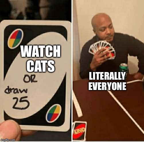 WAT | WATCH CATS LITERALLY EVERYONE | image tagged in draw 25,cats,bad movies,watch,memes,funny | made w/ Imgflip meme maker