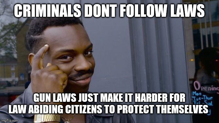 Roll Safe Think About It Meme | CRIMINALS DONT FOLLOW LAWS GUN LAWS JUST MAKE IT HARDER FOR LAW ABIDING CITIZENS TO PROTECT THEMSELVES | image tagged in memes,roll safe think about it | made w/ Imgflip meme maker