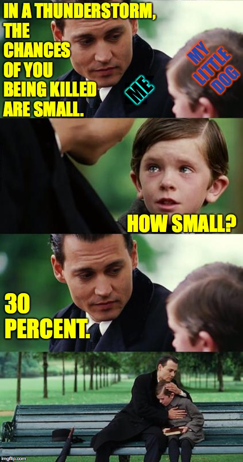 Math.  Even dogs need it. | IN A THUNDERSTORM, THE CHANCES OF YOU BEING KILLED ARE SMALL. 30 PERCENT. ME MY LITTLE DOG HOW SMALL? | image tagged in memes,finding neverland,math,keeping it real,bad dad | made w/ Imgflip meme maker