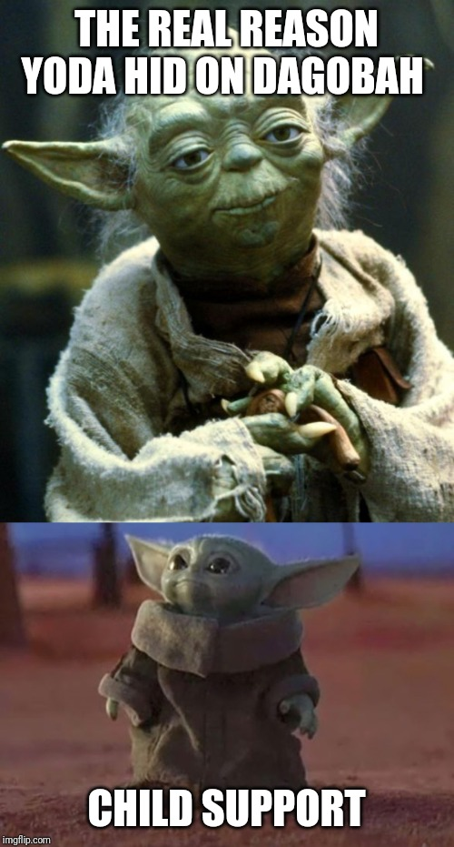 THE REAL REASON YODA HID ON DAGOBAH; CHILD SUPPORT | image tagged in memes,star wars yoda,baby yoda | made w/ Imgflip meme maker